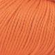 577 Burnt orange
