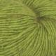 4037 Eplegrønn