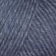 684 Bluebird