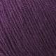 208 Autumn purple