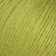 882 Lime