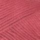 356 Raspberry