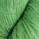 889024 Eplegrønn